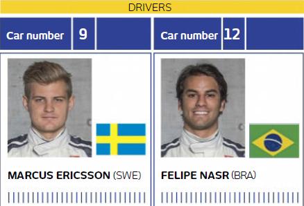 Sauber Drivers